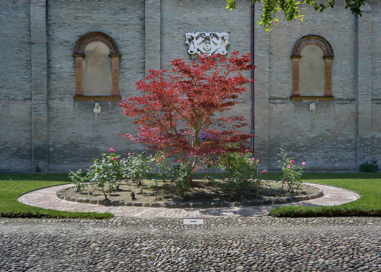 acero davanti alla prospettiva di Palazzo Santini Sinz di Ferrara per Interno verde