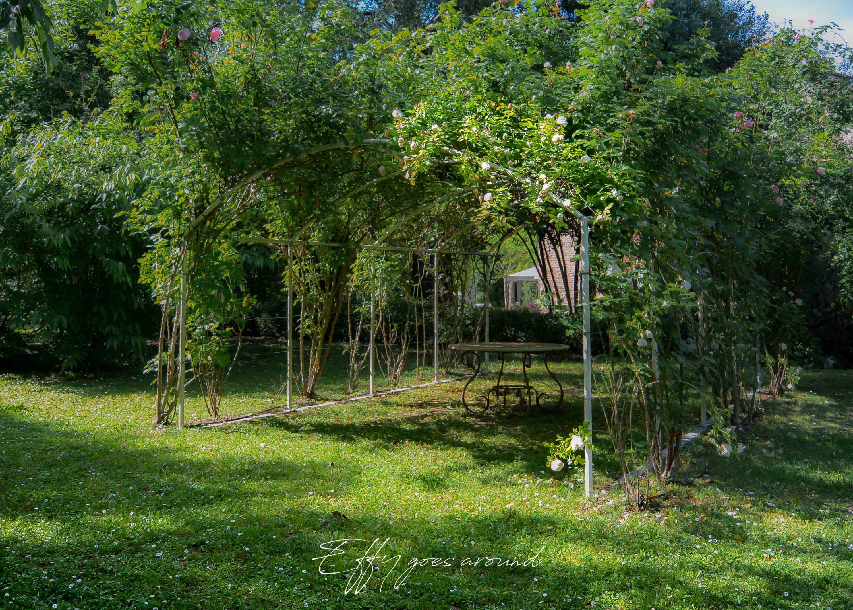 rosai nel giardino inglese di Villa Horti della Fasanara di Ferrara per Interno verde