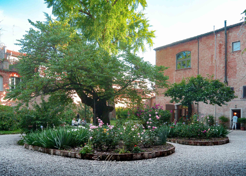 ginkgo biloba, albero di Giuda e aiuole nel giardino di via Terranuova a Ferrara per Interno verde