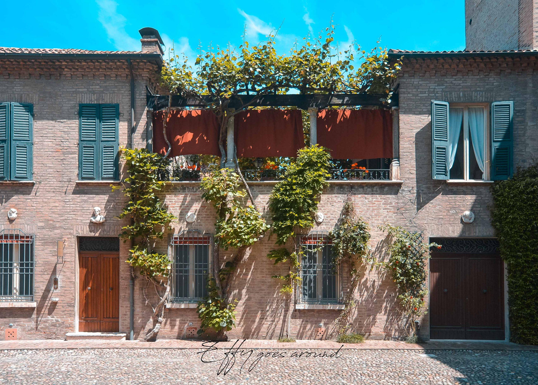 kiwi rampicante nel Palazzo Santini Sinz di Ferrara per Interno verde