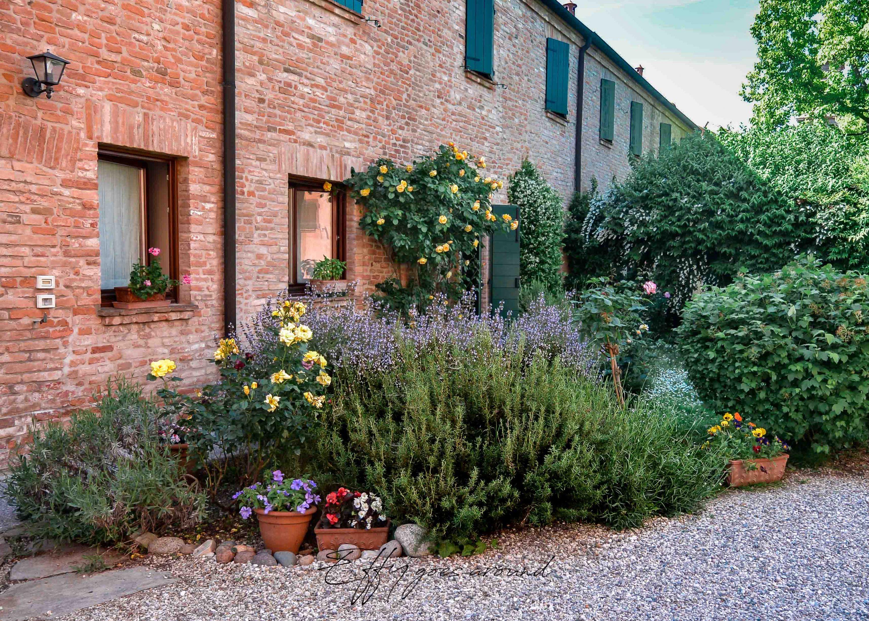 piante e arbusti presso La Vigna di Ferrara per Interno verde