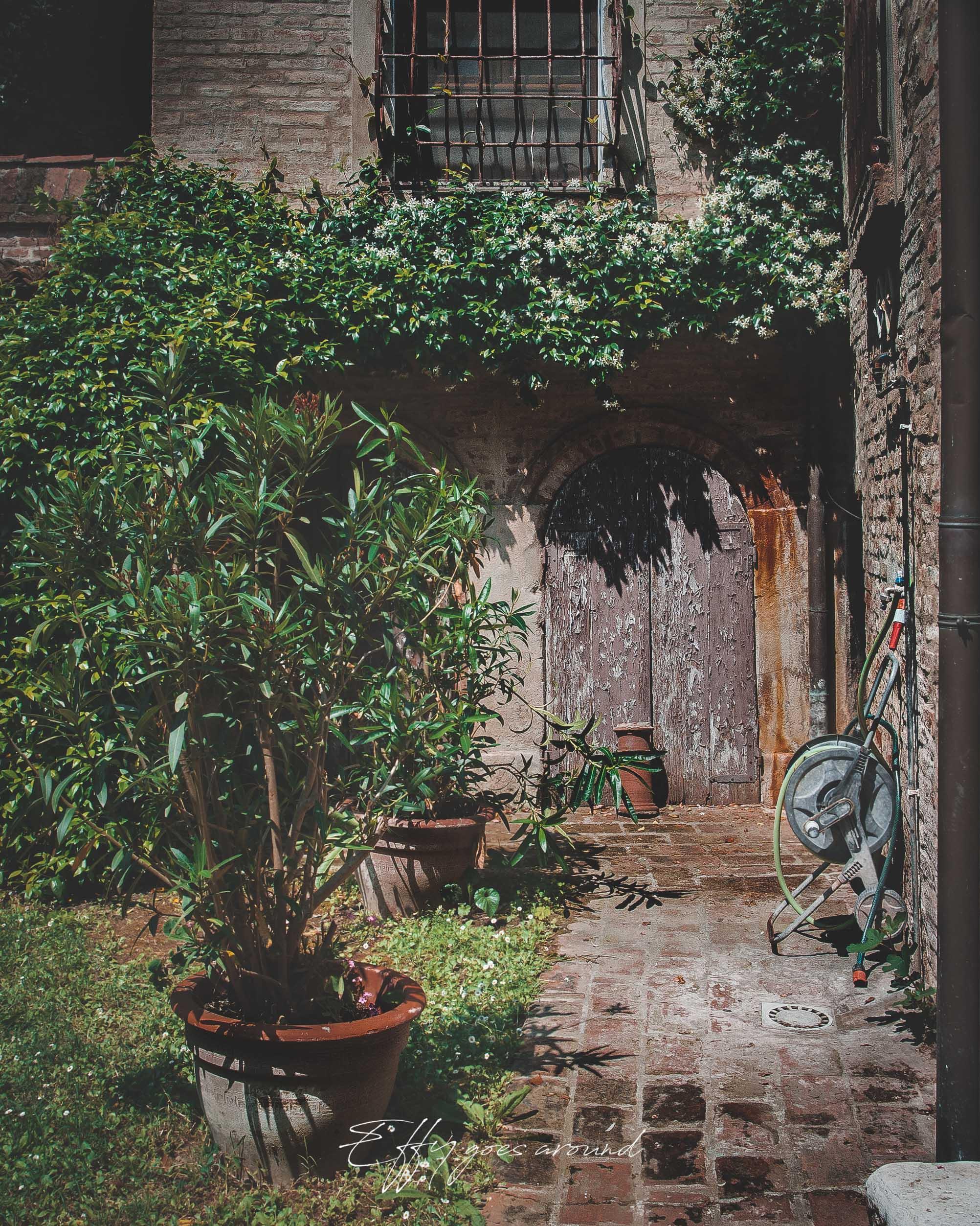 passiflora e gelsomino nel giardino di via Carlo Mayr a Ferrara per Interno Verde