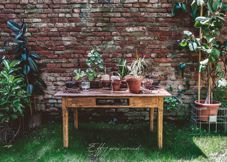 tavolo con vasi in coccio nel giardino di via Quartieri a Ferrara per Interno Verde